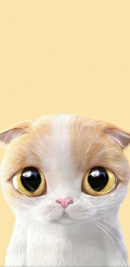 可爱的卡通猫壁纸
