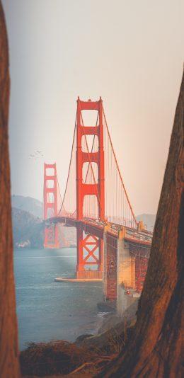 [加载较慢]4K手机壁纸-美国金门大桥