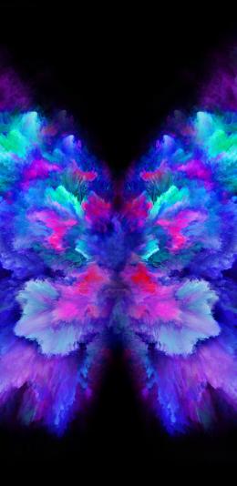 三星galaxy fold内置壁纸(3)花蝴蝶