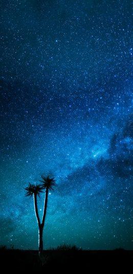晚上的银河系星空壁纸图片