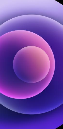 下载iPhone 12紫色壁纸