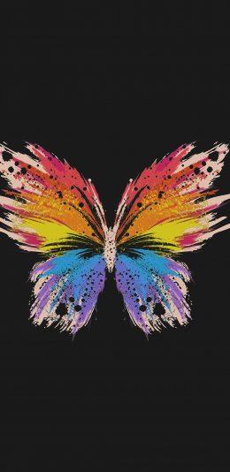 苹果炫彩蝴蝶手机背景图片