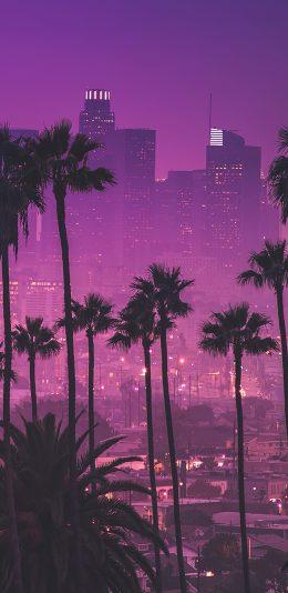 洛杉矶城市风景