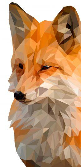 多边形设计 狐狸 2K手机壁纸