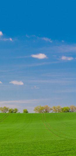 [2436x1125]草原 郊外 天空 绿色 大自然 苹果手机壁纸图片
