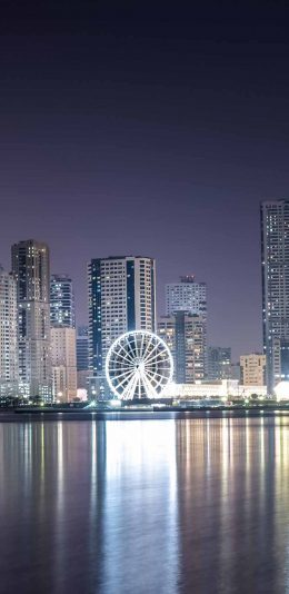 [2436x1125]都市夜景 摩天轮 灯光繁华 苹果手机壁纸图片